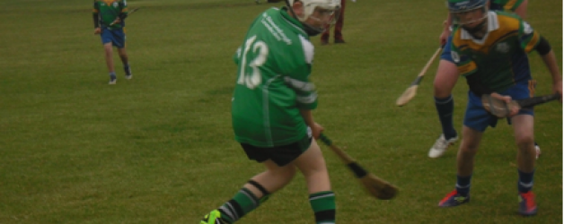 U-13 hurlers end on a high note