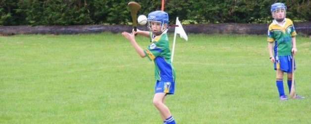 U9's air hurling news
